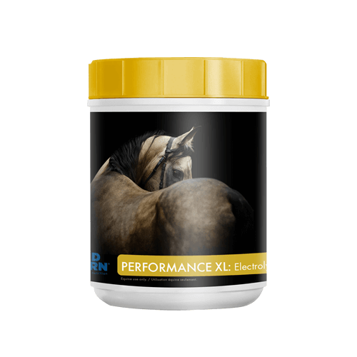 Mad Barn Performance XL Electrolytes 1 Kg