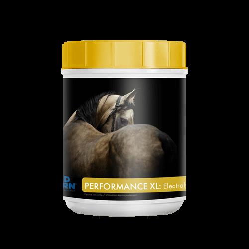 Mad Barn Performance XL Electrolytes 1 Kg
