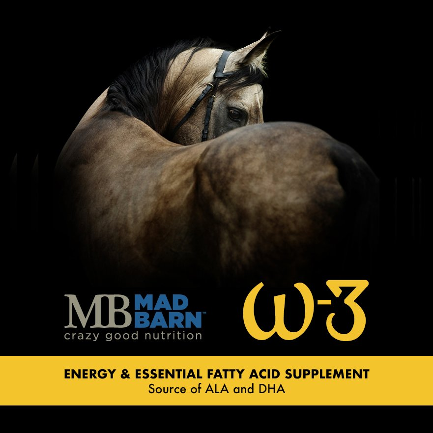 w-3 Oil Equine Supplement