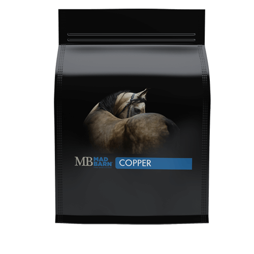 Copper Supplement for Horses