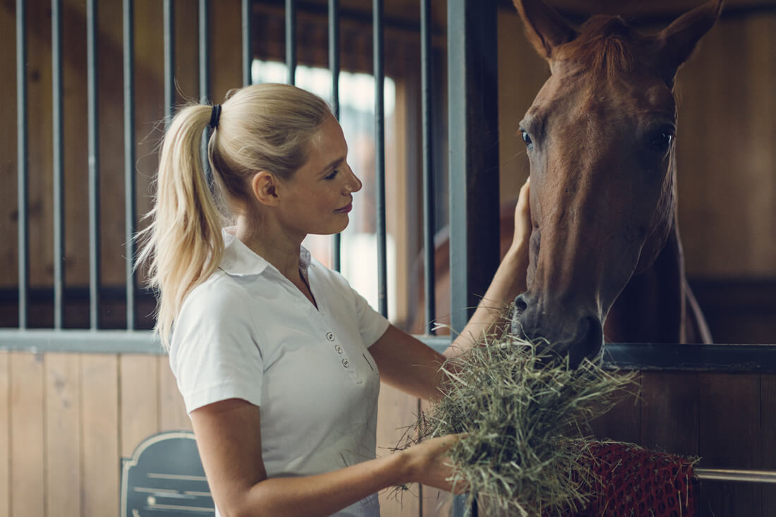 How to Supplement Trace Minerals in Your Horse's Diet