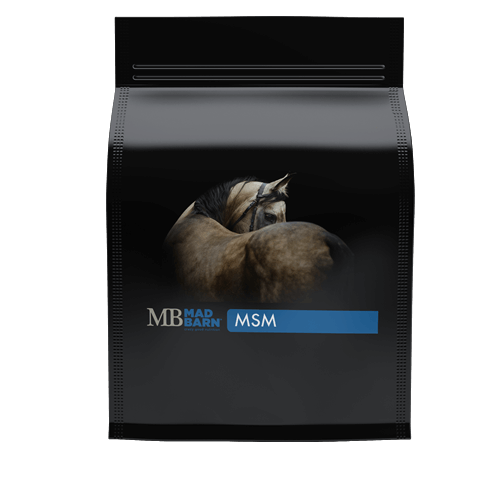 MSM Supplement for Horses