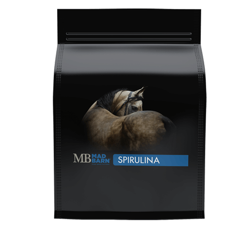 Spirulina for Horses